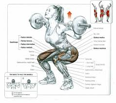 muscles used